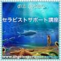 fc2blog_20170505172638619.jpg