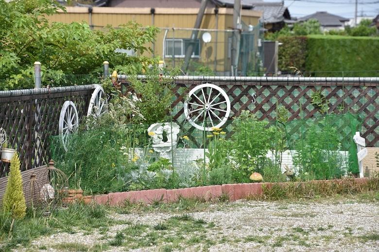003 ガーデン