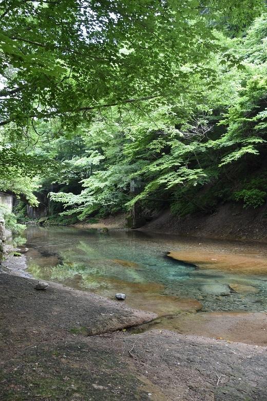 184 木の俣川