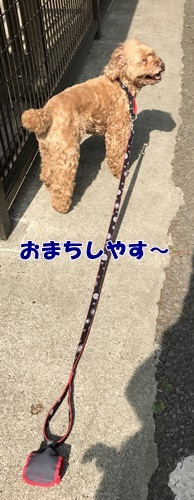 2017.5.13_2