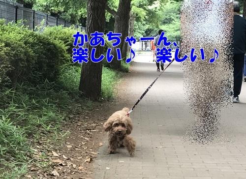 2017.6.19_3