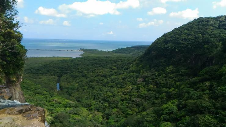 西表島・ピナイサーラの滝