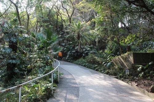 0247:南方熊楠記念館 番所山公園②