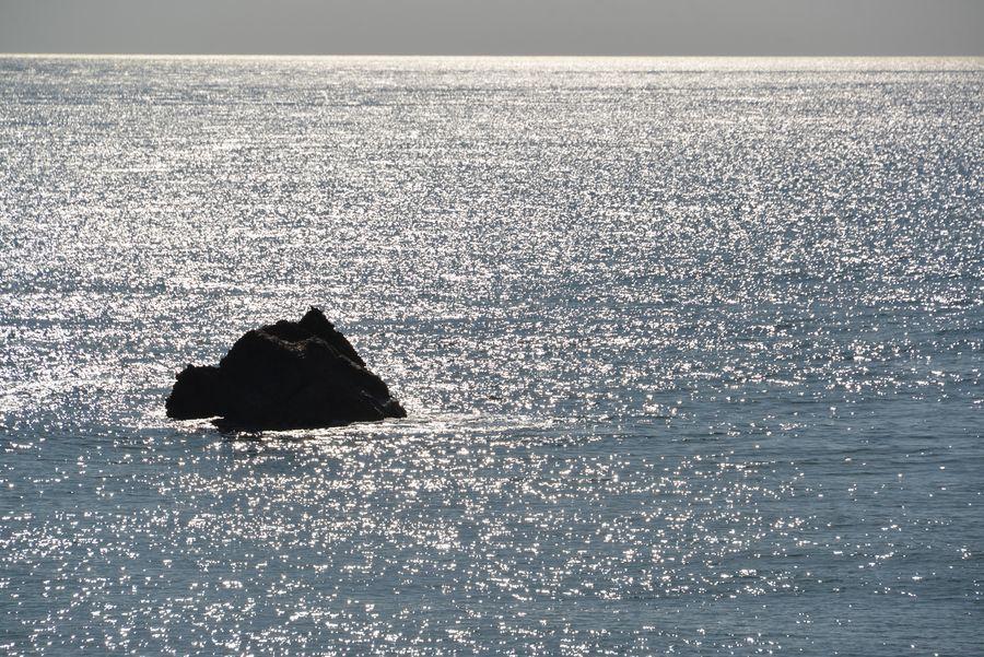 白岩海岸散策-6