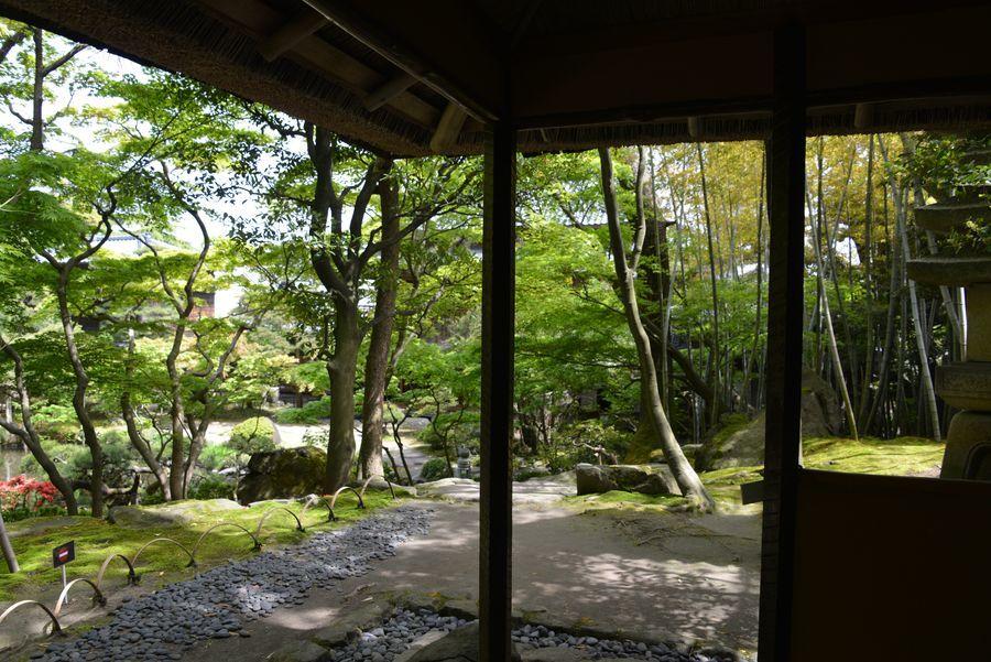 旧齋藤家別邸 庭園-3