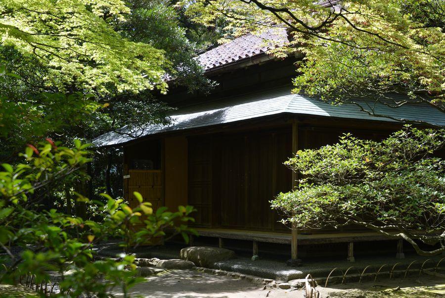 旧齋藤家別邸 庭園-6