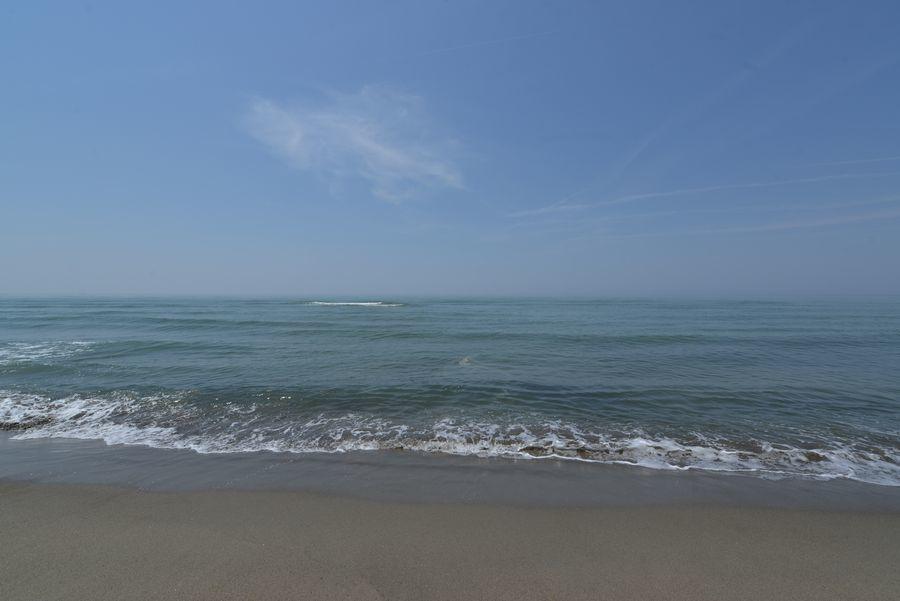 海岸 波打ち際まで-6