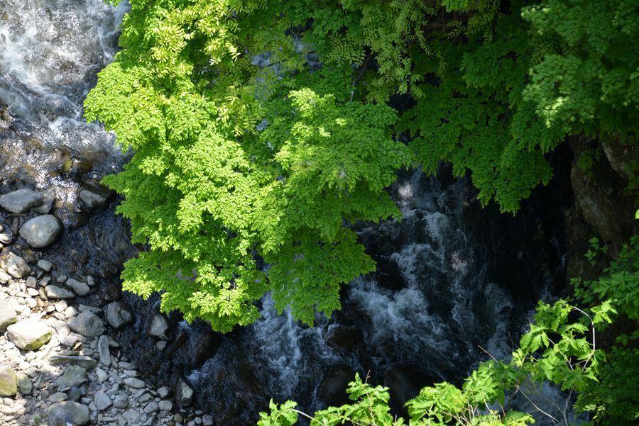 緑の渓谷-4