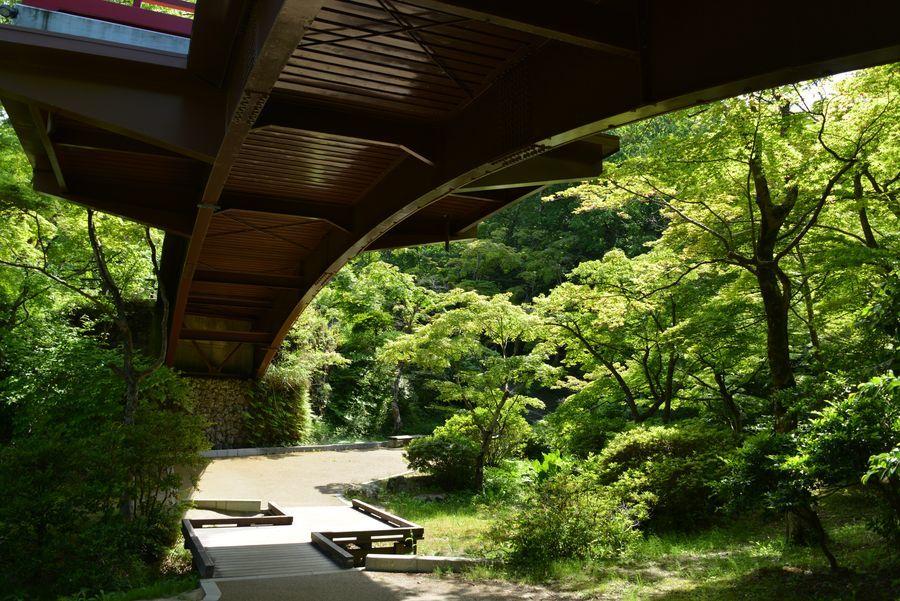 もみじ谷とトンネル-1