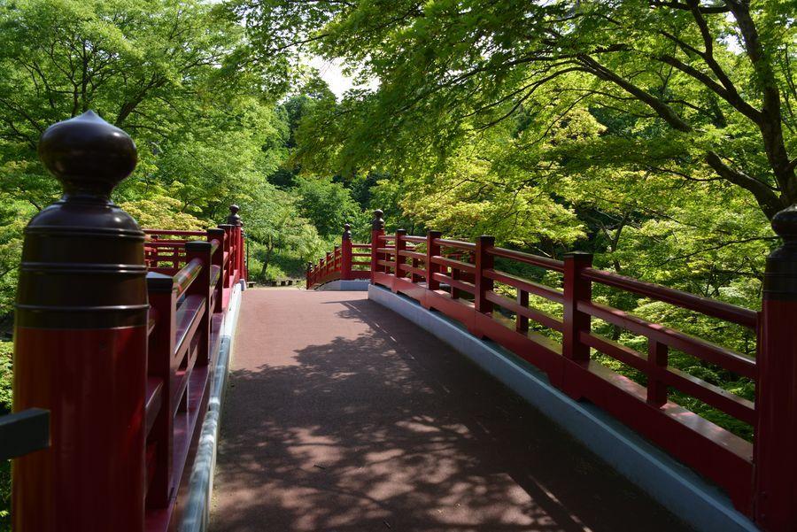 もみじ谷とトンネル-3
