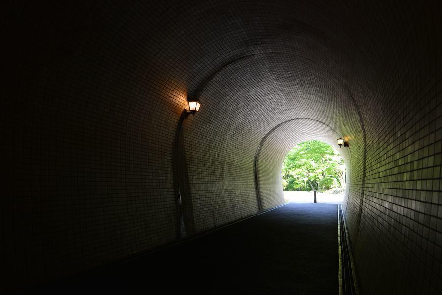 もみじ谷とトンネル-4