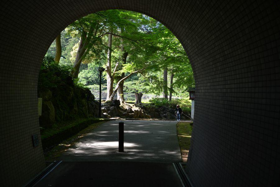 もみじ谷とトンネル-6