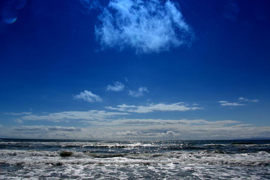 青き海岸-1