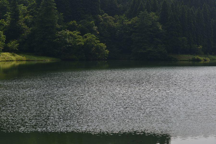 水源地-5