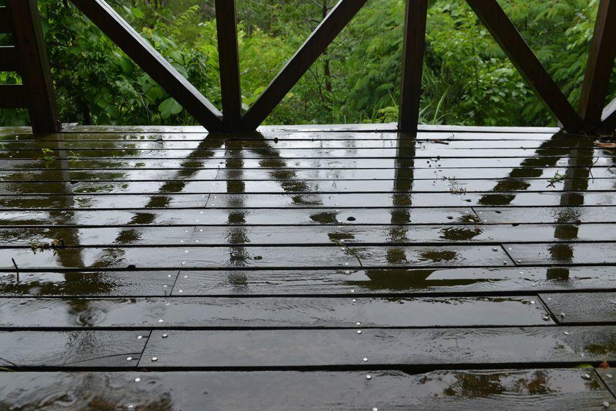 雨のち・・・1