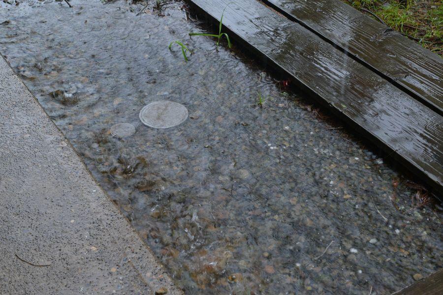雨のち・・・3