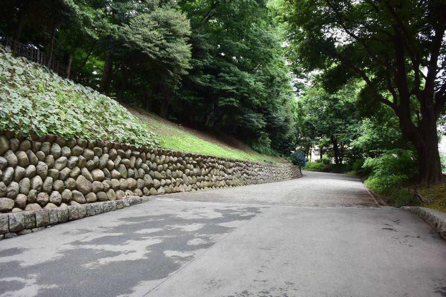 旧岩崎邸庭園-7