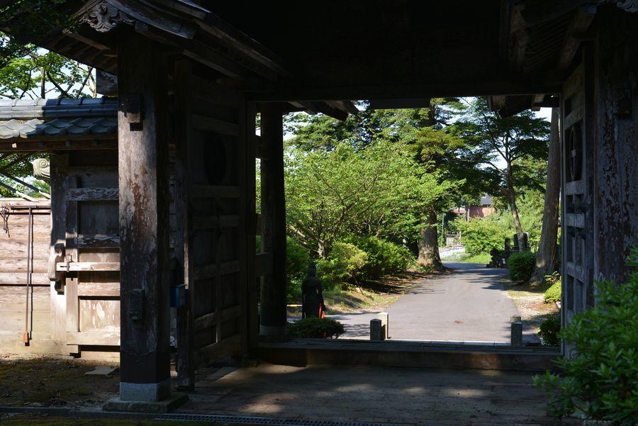 種月寺 紫陽花と-5