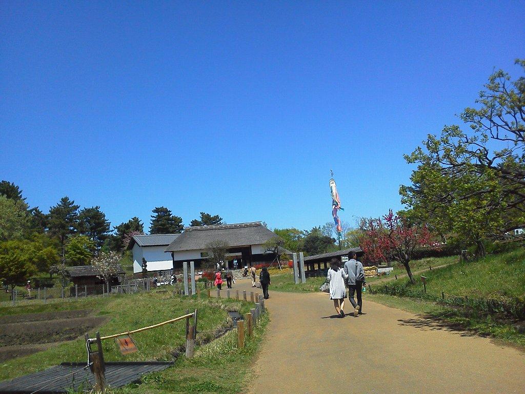 F1000240昭和記念公園4月23日