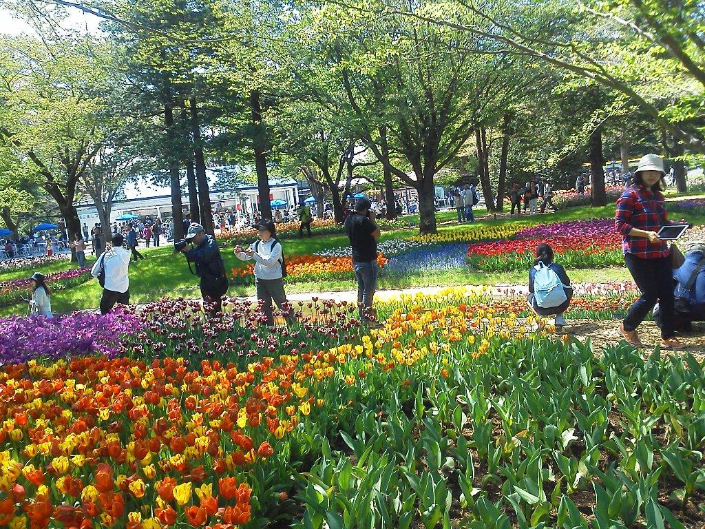 F1000244昭和記念公園4月23日