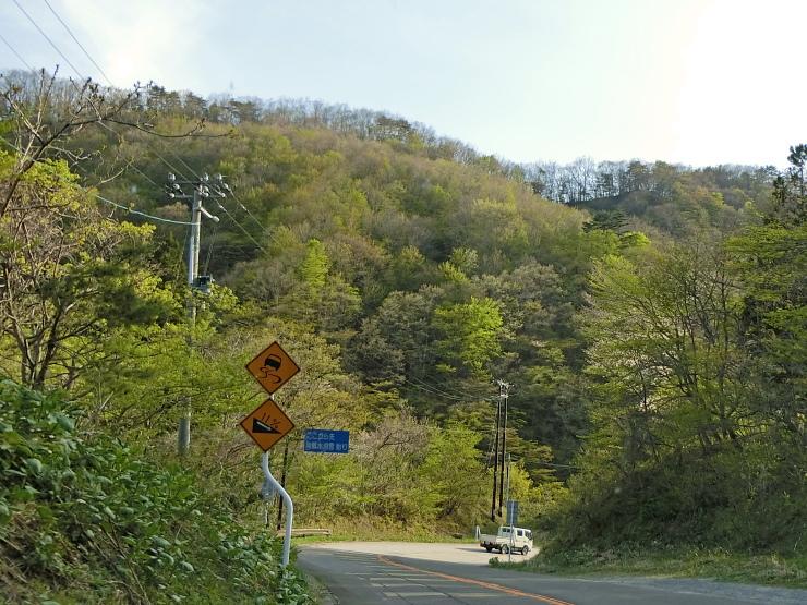 山麓は新緑