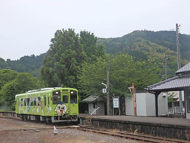 P6060208.jpg