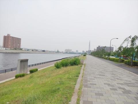 DSCN3698.jpg