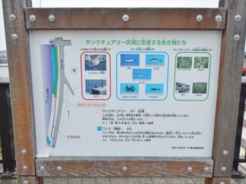 DSCN3701.jpg