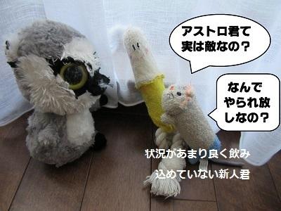 御前会議3