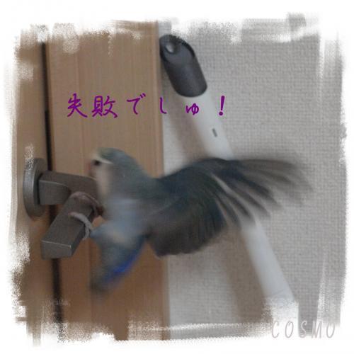 inko63_convert_20170703224703.jpg