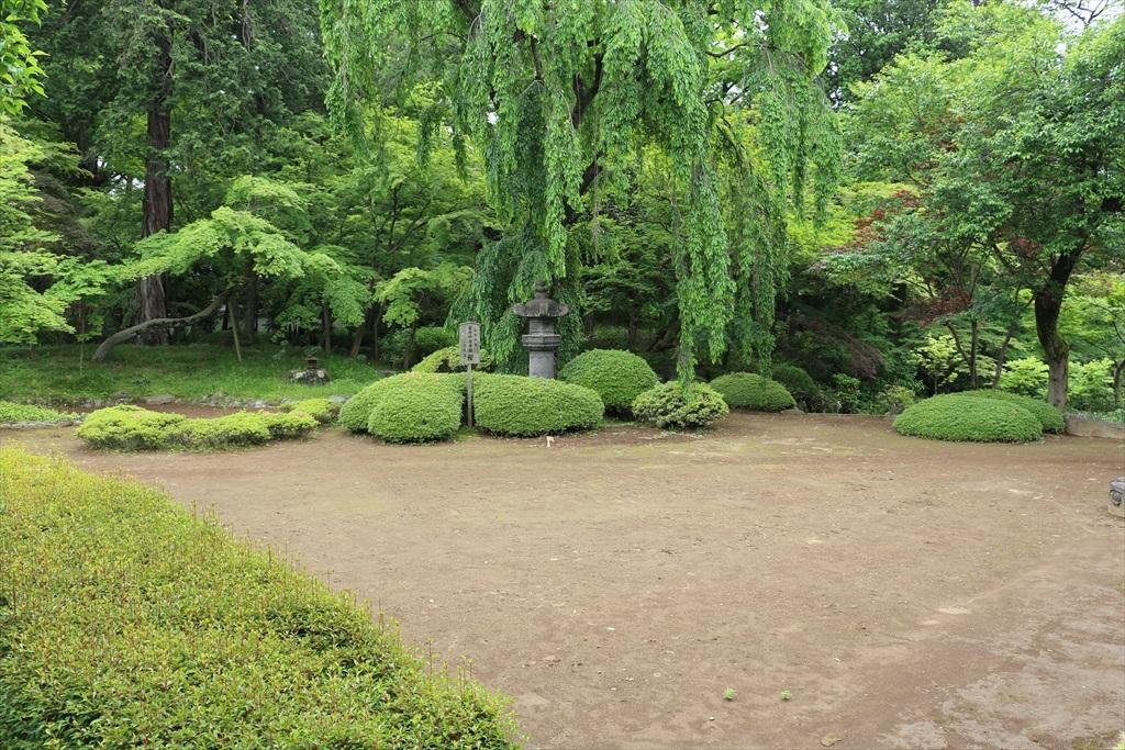 庭(その1)_1