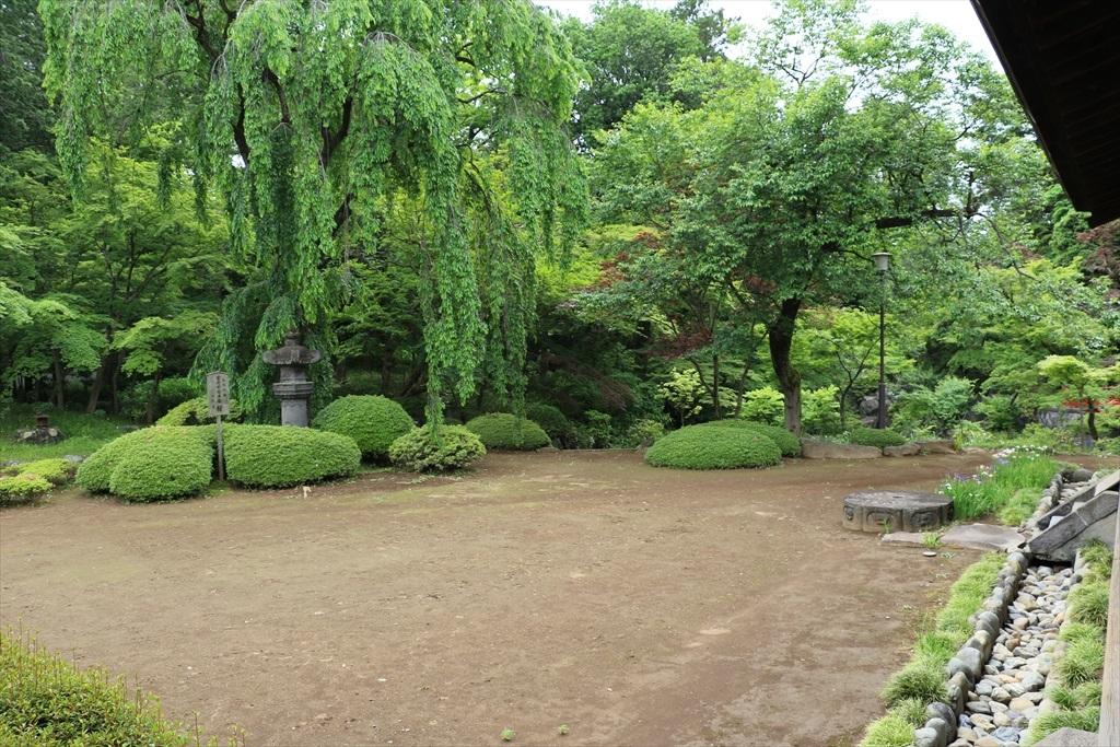 庭(その1)_3