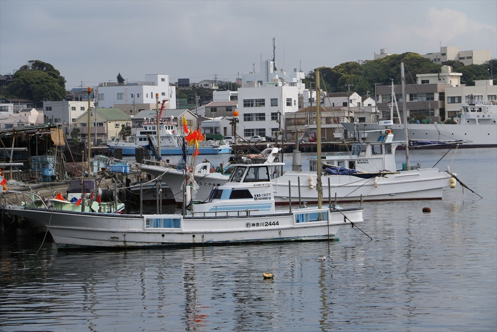 城ケ島漁港_1