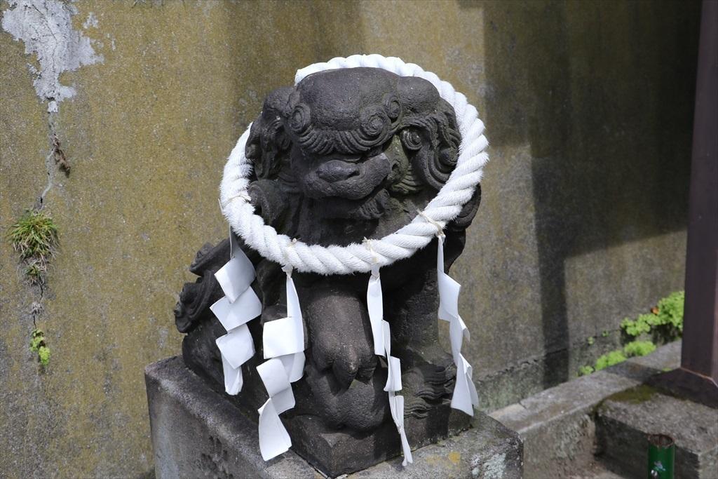 鳥居前の狛犬_2