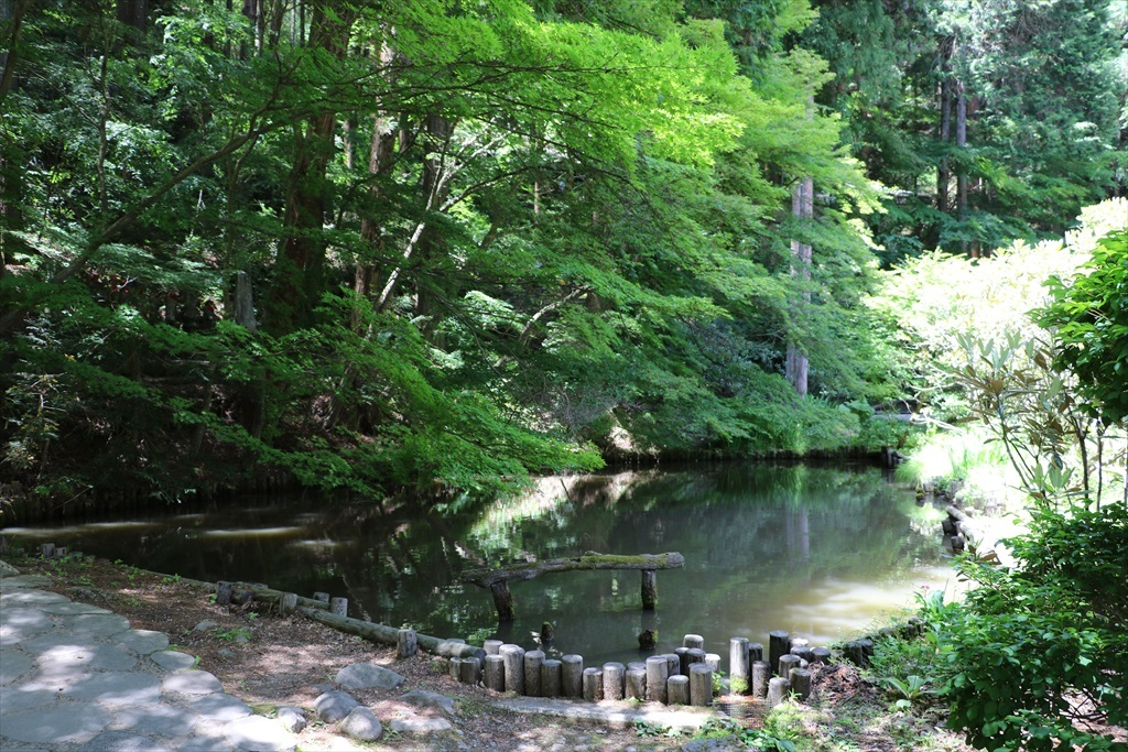 池を横目に見ながら進む