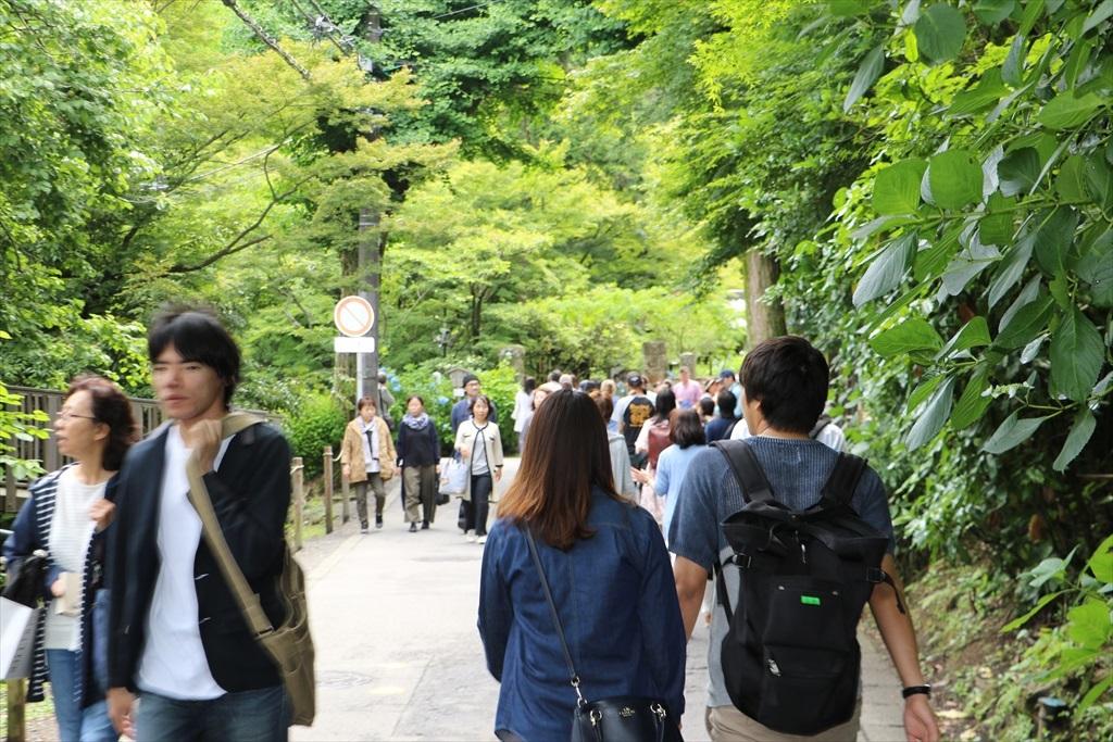 円覚寺に立ち寄る人もいるにはいたが_4