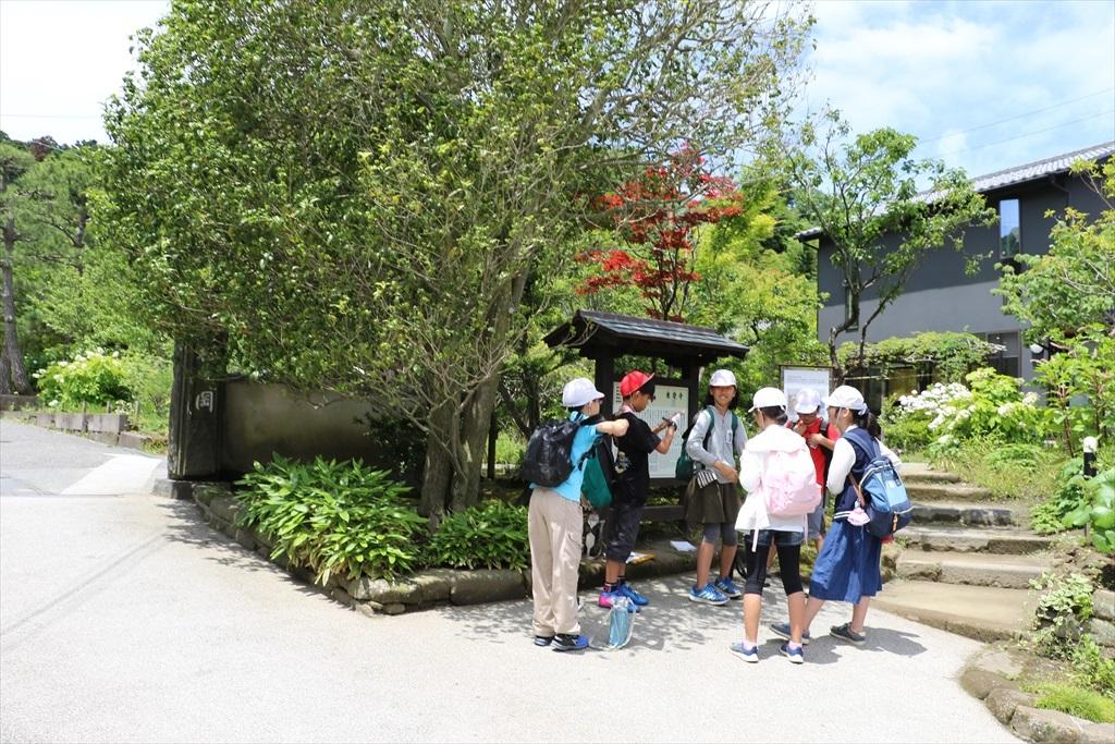 東慶寺は、明月院に比べれば、落ち着いてみることができそうだ_1