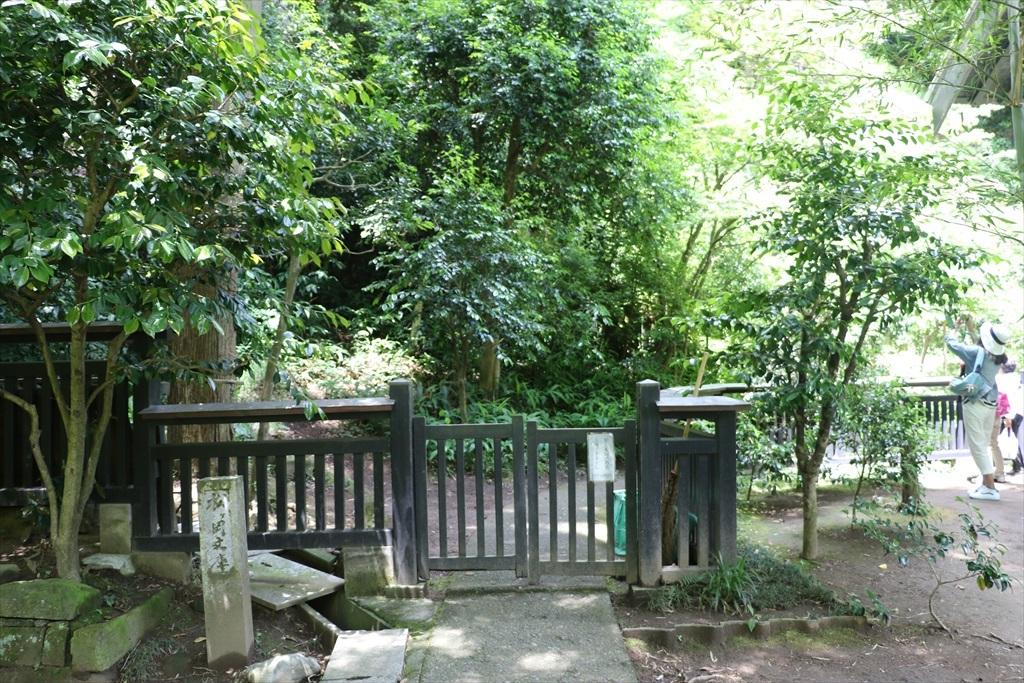 松ヶ岡文庫への入り口近辺_1