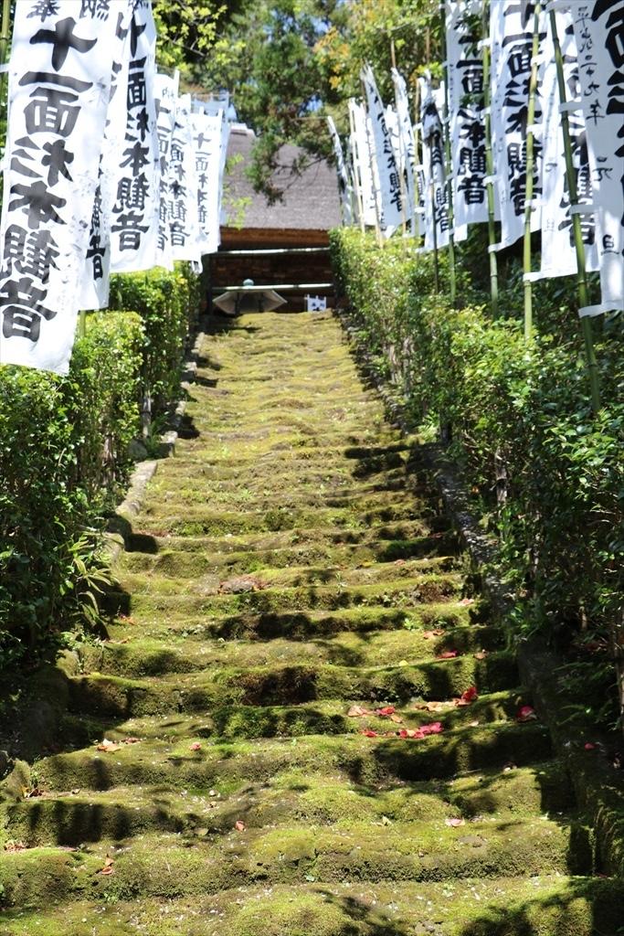 鎌倉石の苔生した石段_3