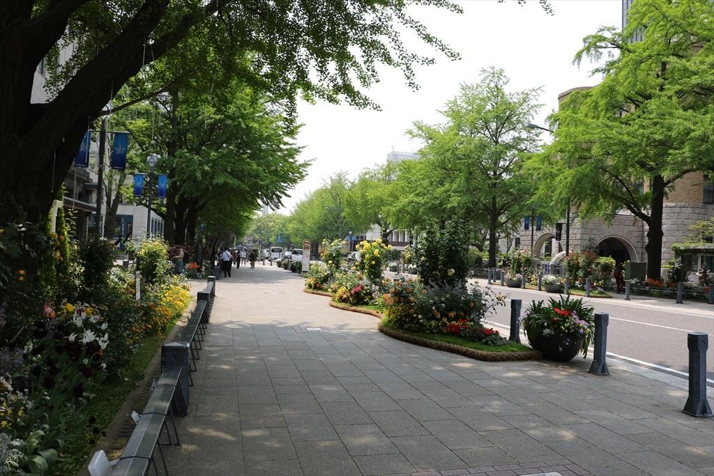 別の機会に撮った日本大通りの花の飾り付けの様子