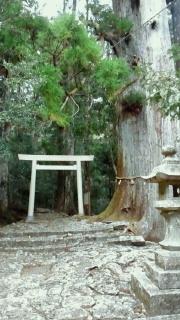 大馬神社 4