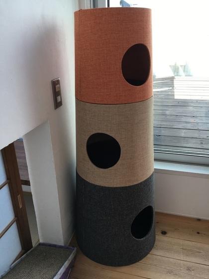 新しく買ったキャットタワー