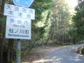 170429木立の中を淡々と上っていく