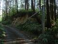 170429林道水台線に入る