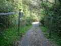 170429林道は水間峠旧道に合流