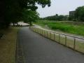 170610車道を避けて賀茂川の河川敷の降りる