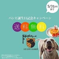 大型犬のための海外直輸入グッズ専門店スタジオバンビ