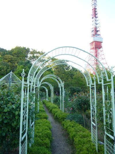 ブログ0505公園5