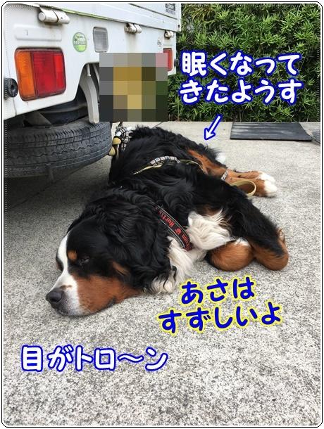 バルじぃの軽トラ