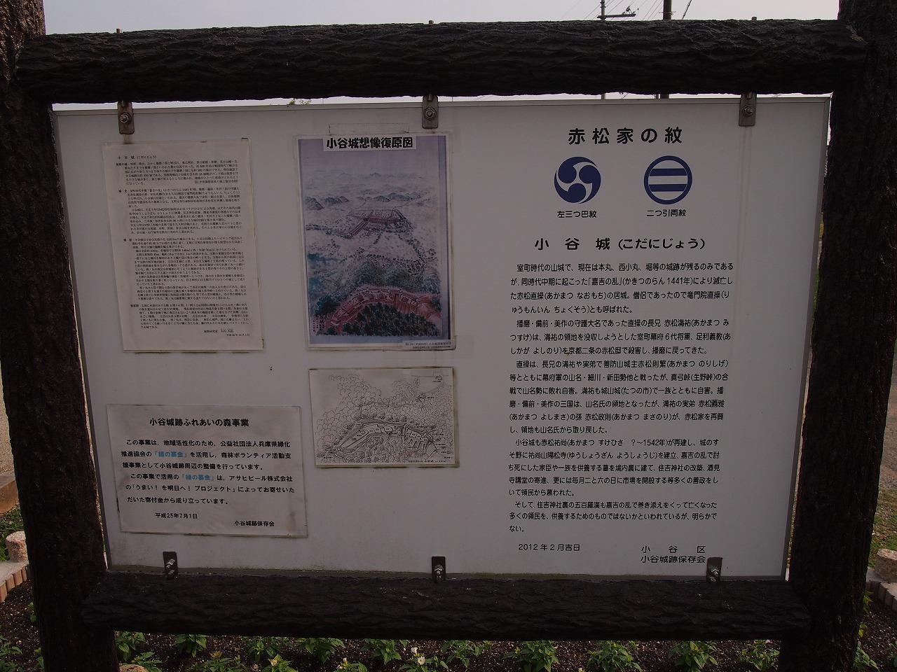 s-P1012985.jpg